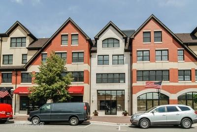Riverside Condo/Townhouse For Sale: 10 East Burlington Street #3J