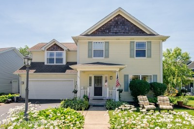 Crystal Lake Single Family Home For Sale: 137 Center Street