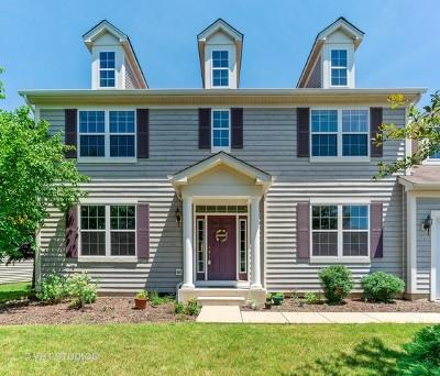 Oswego Single Family Home For Sale: 704 Keene Avenue