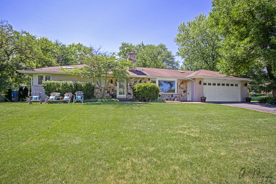Prospect Heights Single Family Home For Sale: 404 Hillcrest Drive