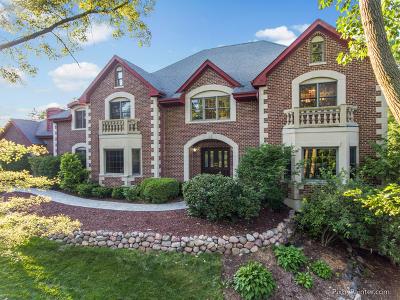 Barrington Single Family Home For Sale: 185 Deer Grove Lane