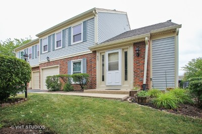 Schaumburg Condo/Townhouse For Sale: 605 College Drive
