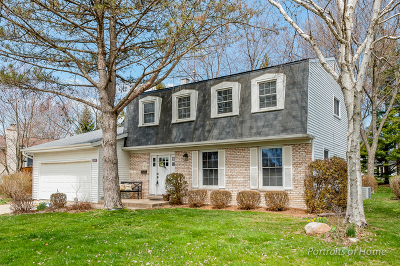 Wheaton Single Family Home For Sale: 1241 Downing Court