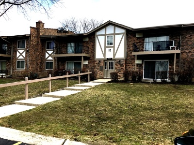 Willowbrook Condo/Townhouse For Sale: 9s025 Lake Drive #205