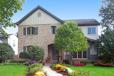 Hinsdale Single Family Home For Sale: 645 South Bruner Street