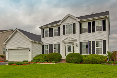 Libertyville Single Family Home For Sale: 1615 South Falcon Drive