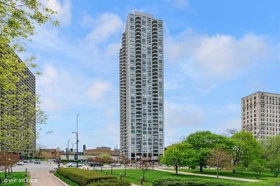 Condo/Townhouse For Sale: 2020 North Lincoln Park West Avenue #25M