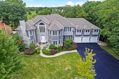 Burr Ridge Single Family Home For Sale: 249 Lakewood Circle