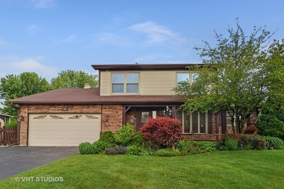 Carol Stream Single Family Home For Sale: 590 Woodcrest Court