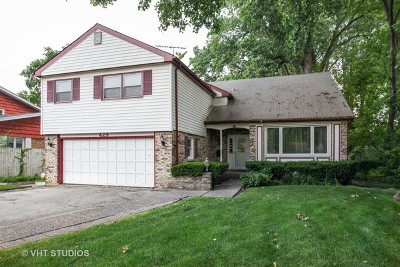 Wilmette Single Family Home For Sale: 429 Hibbard Rd