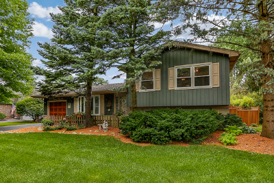 Maplebrook Single Family Home For Sale: 1632 Killdeer Drive