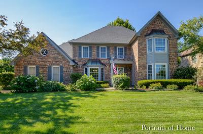 Wheaton Single Family Home For Sale: 341 Brighton Drive