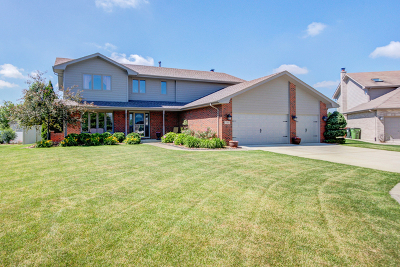 Tinley Park Single Family Home For Sale: 7915 Lakeview Terrace
