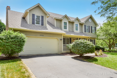 Naperville Single Family Home For Sale: 1960 Clyde Drive
