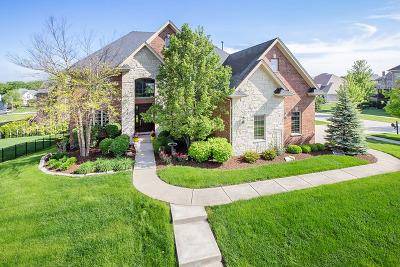 Lemont Single Family Home For Sale: 12604 Thornberry Drive