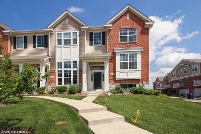 Orland Park Condo/Townhouse For Sale: 10596 153rd Place