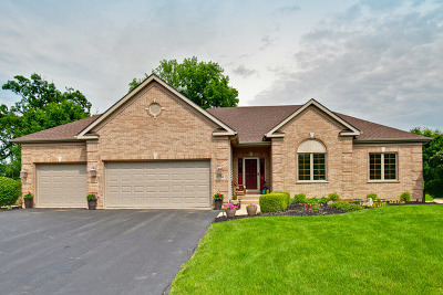 Antioch Single Family Home For Sale: 1120 Long Bay Court
