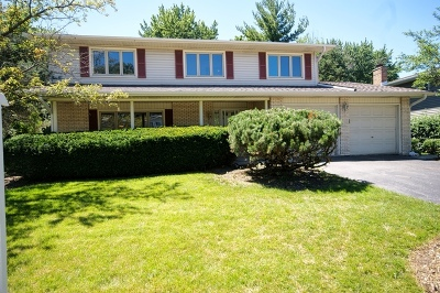 Downers Grove Single Family Home For Sale: 6530 Dunham Road