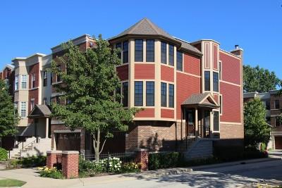 Schaumburg Condo/Townhouse For Sale: 13 Illinois Avenue