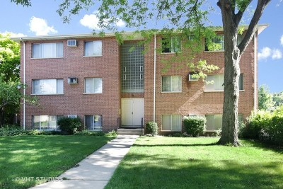 Roselle Multi Family Home For Sale: 14 East Hattendorf Avenue