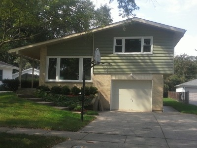 Libertyville Single Family Home For Sale: 223 Harding Avenue