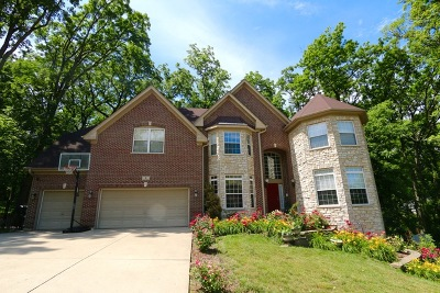 Streamwood Single Family Home For Sale: 4 Cranberry Court