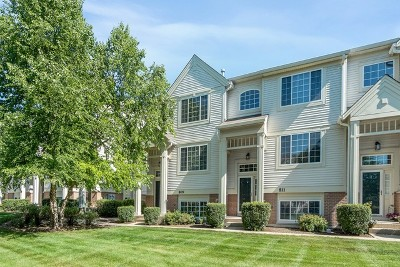 St. Charles Condo/Townhouse For Sale: 809 Pheasant Trail #809