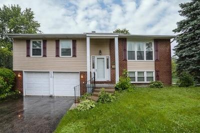 Hoffman Estates Single Family Home For Sale: 4020 Winston Drive