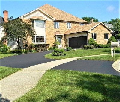 Palatine Single Family Home For Sale: 690 North Aurelia Court