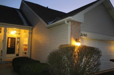 Naperville Condo/Townhouse For Sale: 2040 Tamahawk Lane #2040