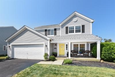 South Elgin Single Family Home For Sale: 690 Fairview Lane