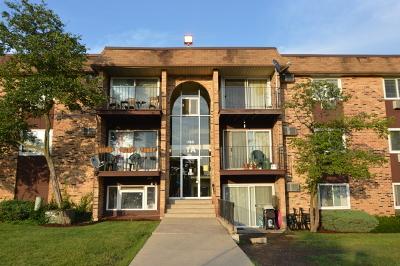Hoffman Estates Condo/Townhouse For Sale: 1165 Higgins Quarters Drive #216