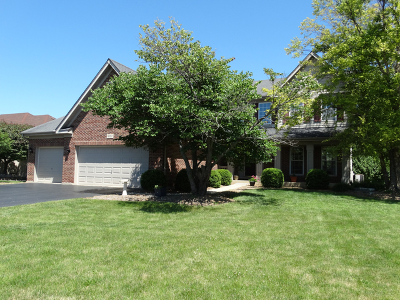 Lockport Single Family Home For Sale: 16757 South Ottawa Drive
