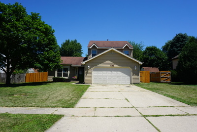 McHenry Single Family Home For Sale: 306 North Huntington Drive