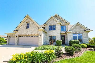Naperville Single Family Home Price Change: 4808 Brabazon Court
