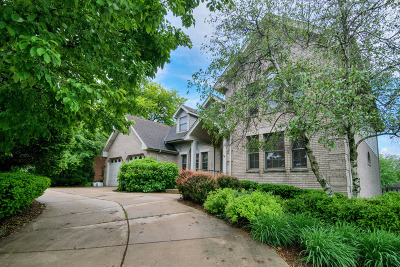 Orland Park Single Family Home For Sale: 8125 Pluskota Drive
