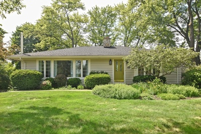 Barrington Single Family Home For Sale: 24264 North Grandview Drive