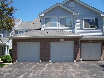Schaumburg Condo/Townhouse For Sale: 241 Sierra Pass Drive