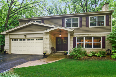Palatine Single Family Home For Sale: 141 East Forest Lane