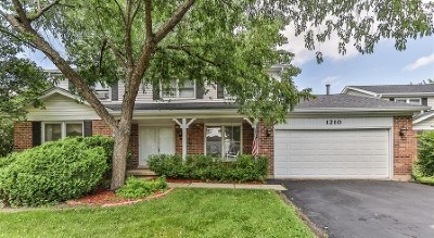 Schaumburg Single Family Home For Sale: 1210 Champlaine Court