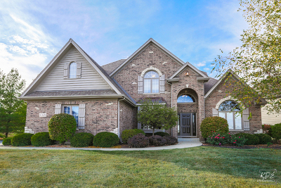 Plainfield Single Family Home For Sale: 11646 Millennium Parkway