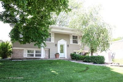 Buffalo Grove Single Family Home For Sale: 384 Regent Drive