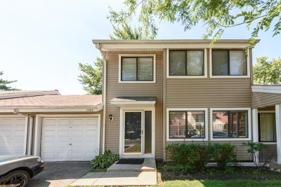 Palatine Condo/Townhouse For Sale: 1723 East Hudson Bay