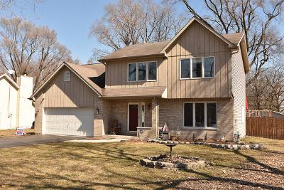 Markham Single Family Home For Sale: 15457 South Hamlin Avenue