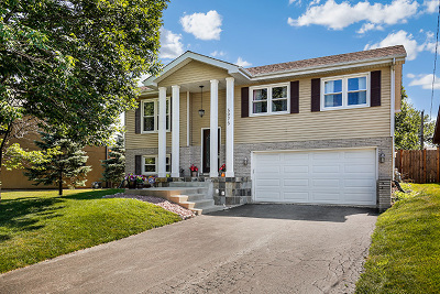 Downers Grove Single Family Home For Sale: 5975 Chase Avenue