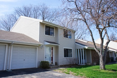 Palatine Condo/Townhouse For Sale: 1273 Donegal Bay Lane
