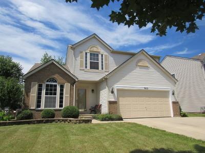 Romeoville Single Family Home For Sale: 262 East Daisy Circle