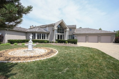 Orland Park Single Family Home For Sale: 11930 Pine Grove Court