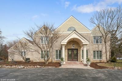 Burr Ridge Single Family Home For Sale: 126 Tomlin Circle