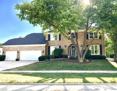 Single Family Home For Sale: 4040 Palmer Court
